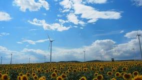 Dos molinoes de viento que giran durante día nublado del verano ventoso metrajes