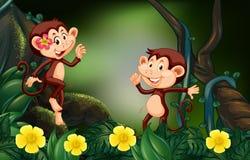 Dos monos en selva tropical stock de ilustración