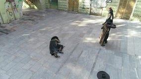 Dos mosqueteros están luchando cerca del tercer muerto almacen de metraje de vídeo