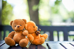 Dos muñecas del oso Fotografía de archivo libre de regalías