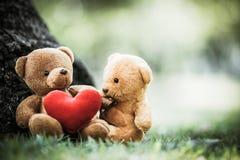 Dos muñecas del oso Foto de archivo libre de regalías