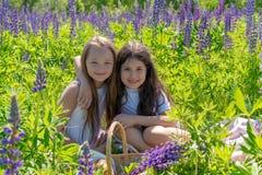 Dos muchachas adolescentes abrazan y sonríen en un campo hermoso de flores fotografía de archivo
