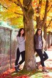 Dos muchachas adolescentes que se colocan al lado de árbol de arce en otoño Imagen de archivo libre de regalías