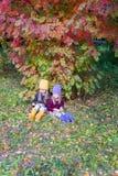 Dos muchachas adorables en bosque en el otoño soleado caliente Imagen de archivo libre de regalías