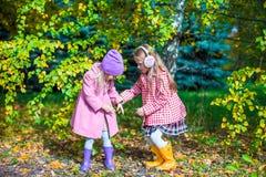 Dos muchachas adorables en bosque en el otoño soleado caliente Fotos de archivo libres de regalías