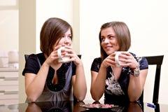 Dos muchachas alegres. imágenes de archivo libres de regalías