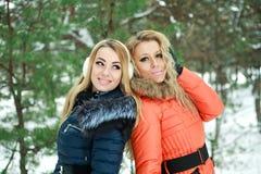 Dos muchachas bonitas felices que presentan en un día de invierno Foto de archivo libre de regalías