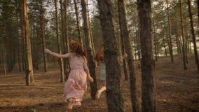 Dos muchachas caucásicas jovenes en los vestidos que corren a través de bosque, jugando la captura, engañando alrededor, naturale almacen de video
