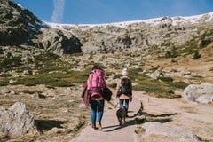 Dos muchachas con sus perros caminan en la montaña imagenes de archivo