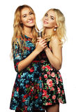 Dos muchachas de la belleza con un micrófono Fotos de archivo