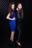 Dos muchachas de la moda Imagenes de archivo