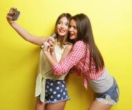Dos muchachas del inconformista de la belleza con un micrófono toman selfi Imagenes de archivo