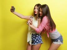 Dos muchachas del inconformista de la belleza con un micrófono toman selfi Imágenes de archivo libres de regalías