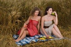 Dos muchachas en comida campestre en campo de trigo Imagenes de archivo