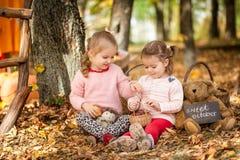 Dos muchachas en el parque del otoño Fotos de archivo