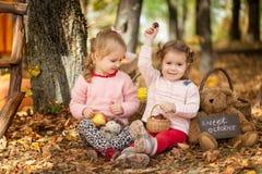 Dos muchachas en el parque del otoño Fotografía de archivo libre de regalías