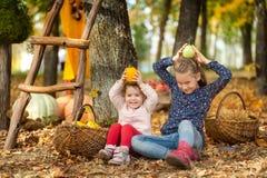 Dos muchachas en el parque del otoño Imágenes de archivo libres de regalías