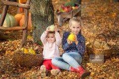 Dos muchachas en el parque del otoño Foto de archivo