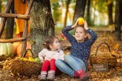 Dos muchachas en el parque del otoño Imagen de archivo