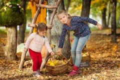 Dos muchachas en el parque del otoño Imagen de archivo libre de regalías
