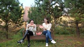 Dos muchachas en el parque que comen la sandía forma de vida del vídeo de la cámara lenta el concepto de muchacha y de sandía almacen de metraje de vídeo