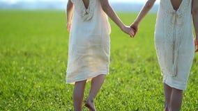 Dos muchachas en los vestidos de lino blancos caminan a lo largo de un prado verde en el campo en un día soleado Carrocería parts almacen de video