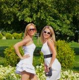 Dos muchachas en parque del verano Imagen de archivo libre de regalías