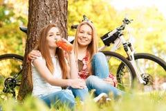 Dos muchachas en una comida campestre con las bicis Foto de archivo
