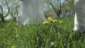 Dos muchachas encantadoras en los vestidos blancos están caminando en un jardín florecido en un día soleado Carrocería parts almacen de video