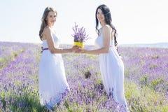 Dos muchachas están caminando en campo de la lavanda Imagen de archivo libre de regalías