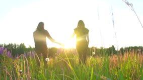 Dos muchachas están caminando llevando a cabo las manos en la puesta del sol, el sol, el símbolo de la gente de LGBT almacen de video