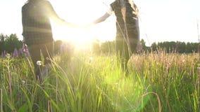 Dos muchachas están caminando llevando a cabo las manos en la puesta del sol, el sol, el símbolo de la gente de LGBT reducen el M almacen de metraje de vídeo