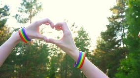Dos muchachas hacen las manos en la puesta del sol, el sol, el símbolo del corazón de la gente de LGBT metrajes