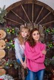 Dos muchachas hermosas que presentan en decoraciones de la Navidad Imágenes de archivo libres de regalías