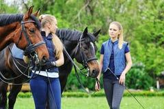Dos muchachas - jinetes de la doma con los caballos Foto de archivo