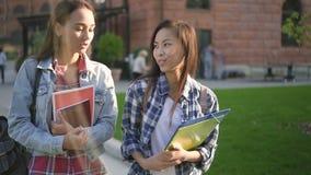 Dos muchachas lindas de la raza mixta son que caminan y que hablan cerca de campus almacen de video