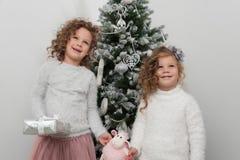 Dos muchachas lindas del niño con los regalos, árbol de navidad Fotografía de archivo