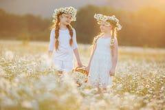 Dos muchachas lindas del niño en el campo de la manzanilla Imagenes de archivo