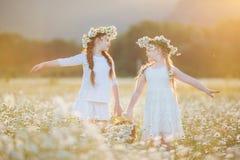 Dos muchachas lindas del niño en la manzanilla colocan con la cesta de flores Imagenes de archivo