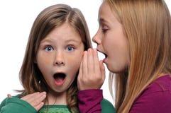 Dos muchachas que comparten un chisme Fotografía de archivo libre de regalías