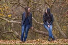 Dos muchachas que hablan en parque del otoño Imagen de archivo