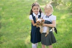 Dos muchachas que juegan con un perro en el césped verde Fotos de archivo
