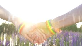 Dos muchachas que llevan a cabo las manos en la puesta del sol, sol, símbolo de LGBT, lluvia almacen de video