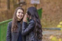 Dos muchachas que se divierten en parque del otoño Fotos de archivo
