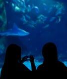 Dos muchachas que visitan el acuario Fotos de archivo libres de regalías