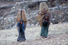 Dos muchachas tibetanas con la cesta Imagen de archivo