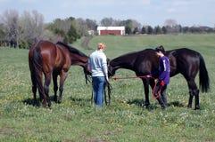 Dos muchachas y dos caballos Imagen de archivo libre de regalías