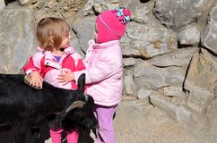 Dos muchachas y una cabra Fotografía de archivo libre de regalías