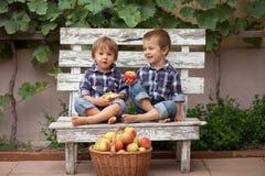 Dos muchachos, comiendo manzanas Imágenes de archivo libres de regalías