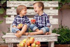 Dos muchachos, comiendo manzanas Fotografía de archivo